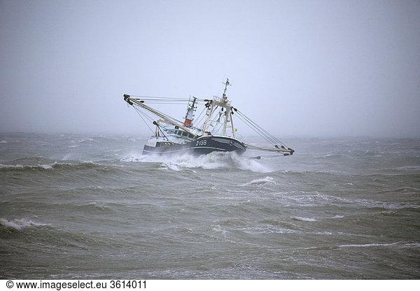 boat,  fishing,  fish,  storm,  North Sea,  Canal,  fishing-net,  fishing boat,  water,  sea,  wind,  waves,  danger,  food