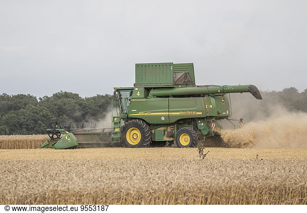 Germany,  Lower saxony,  combine harvester at work