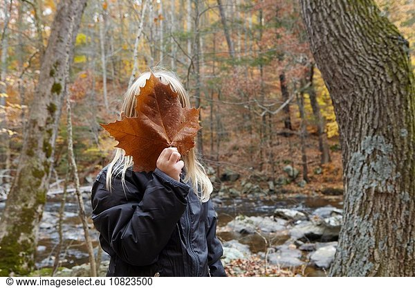 Girl covering face with maple leaf in forest