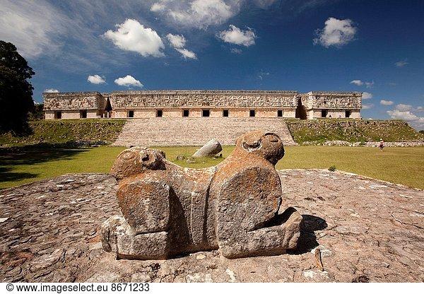 Jaguar, Panthera onca, Skulptur, Großstadt, Ausgrabungsstätte, Hintergrund, Palast, Schloß, Schlösser, Nordamerika, Mexiko, Maya, Jaguar, Uxmal