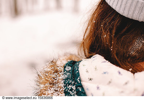 Rear view of a girl with snow on her fur hood and hair, Rear view of a girl with snow on her fur hood and hair