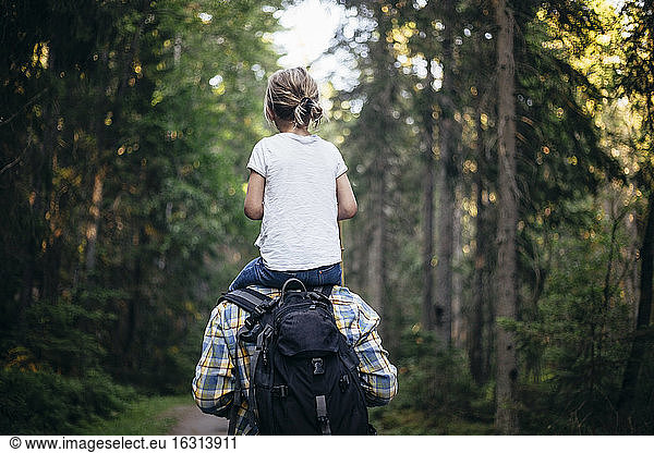 Rear view of father carrying daughter on shoulder while walking in forest