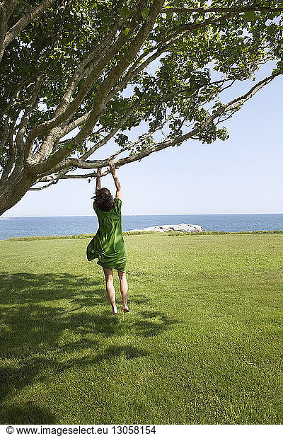 Rear view of woman jumping while reaching branch over grassy field