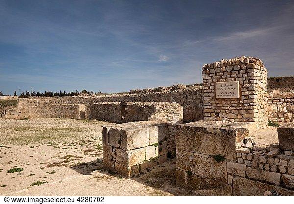 Tunisia,  Central Western Tunisia,  Makthar,  ruins of the Roman-era city of Mactaris,  amphitheater