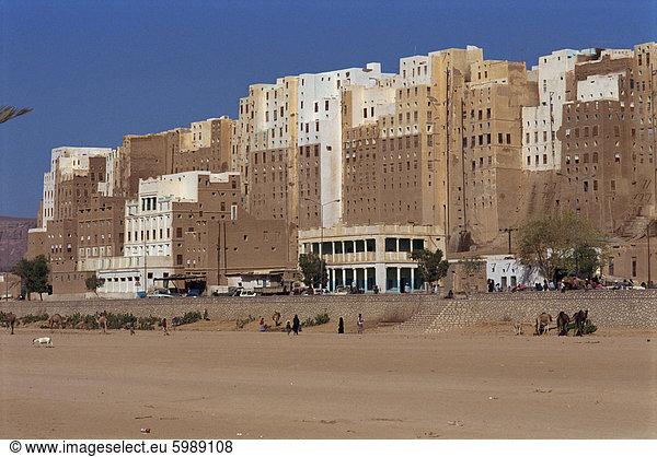 Wand, Gebäude, Großstadt, Ziegelstein, groß, großes, großer, große, großen, Menschlicher Rücken, Menschliche Rücken, Naher Osten, UNESCO-Welterbe, Schlamm, Shibam