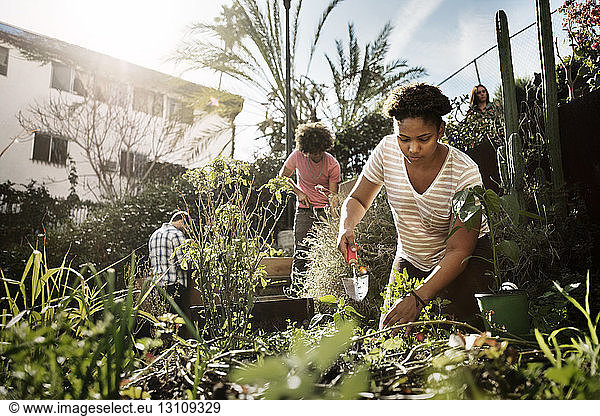 Woman working with friends in community garden