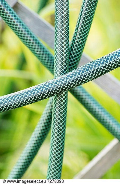 Detail of green garden hose used for watering garden
