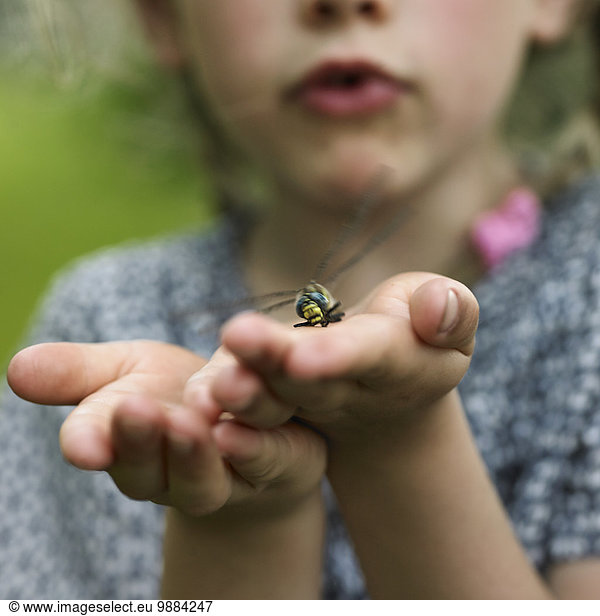 Girl with dragonfly on palm