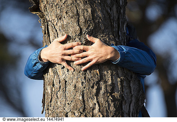Hands of a man hugging a tree