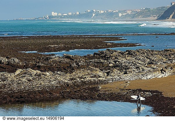 France,  Pyrenees Atlantiques,  Euskadi,  Pays Basque,  Guethary,  surfer entering the water to surf